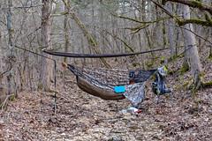 Camped near Long Creek (Gary Allman) Tags: fujifilmxe3 backpacking gsa hammockcamping backpackingjanuary262019 herculesgladeswilderness