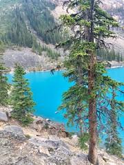 Moraine Lake, Canada (Yesi Santacruz) Tags: canadianrockies banffnationalpark banff morainelake lake turquoise nature