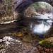El puentecito