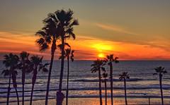 Sunset 1-2-11-19 (rod1691) Tags: oceanside california sunset palmtrees water surf beach