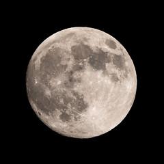 Moon Shot (Pam & Ben) Tags: nikon d800 200500 tc14eii moon gitzo