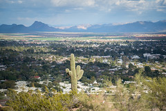 Camelback Mountain - Phoenix, Arizona (ChrisGoldNY) Tags: chrisgoldphoto chrisgoldberg sonyalpha sonya7rii sonyimages licensing forsale travel arizona america usa phoenix camelbackmountain desert west az