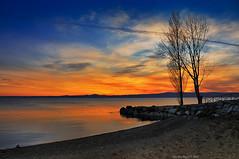 Bolsena Beach, Bolsena Lake, Central Italy (Claudio_R_1973) Tags: lake beach pier trees sunset clouds water vivid warm landscape bolsena bolsenalake centralitaly tuscia viterbese lazio outdoor nature