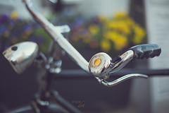 the yellow dot bike_#47/100 Bike Project (pierfrancescacasadio) Tags: febbraio2019 24022019840a8711 bike bikeproject 100bicycle 50mm yellowdot bicicletta bicycle wideopen bokeh 47100