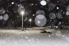 Speckled and suspended (aerojad) Tags: eos canon 80d dslr 2019 chicago urban snow snowing winter february bokeh snowkeh outdoors city night nightphotography nightscape winterscape snowscape