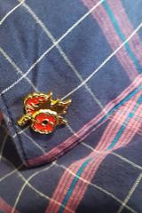Poppy Pin (Bracus Triticum) Tags: poppy pin calgary カルガリー アルバータ州 alberta canada カナダ 11月 十一月 霜月 jūichigatsu shimotsuki frostmonth autumn fall 平成30年 2018 november
