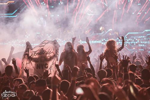 EZoo-2014-Crowd-People-DLG-6603