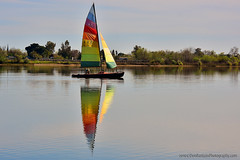 Sailing_01 (DonBantumPhotography.com) Tags: landscapes forebay oroville california buttecounty donbantumcom donbantumphotographycom