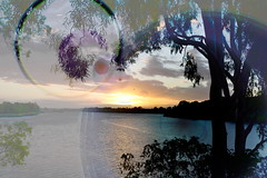 Lens flare (Dreaming of the Sea) Tags: sky sliderssunday tamronsp2470mmf28divcusd nikond7200 trees water gumtrees sunset clouds bundaberg burnettriver queensland australia dusk twilight hss gimp