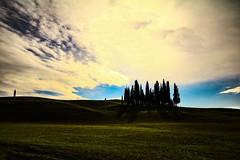 senza titolo. (Enzo Ghignoni) Tags: cipressi sole campi prati colline cielo nuvole