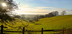 WASELEY LANDSCAPE (chris .p) Tags: waseley landscape worcestershire nikon d610 view england winter 2018 capture uk december midlands sun tree trees walk shadows