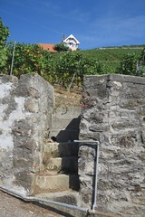 a few stone steps (Riex) Tags: mur wall stone pierre steps stairs escaliers marches steep slope raide pente vineyards vignoble maison house home aran lavaux vaud suisse switzerland g9x