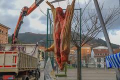 Laudion, San Blas jaia 2019  #DePaseoConLarri #Flickr -4 (Jose Asensio Larrinaga (Larri) Larri1276) Tags: 2019 sanblas laudio llodio araba álava basquecountry euskalherria eh feria turismo productosvascos