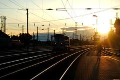 Ferencvaros Station (Anselmo Portes) Tags: budapest budapeste hungary hungria train trainstation trem sunset pordosol ferencvaros ferencvarostrainstation ferencvarosstation