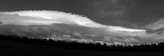 Cloud Over Pines _ bw (Joe Josephs: 3,166,284 views - thank you) Tags: california californialandscape landscapephotography rurallandscape hiking ocean shoreline travelphotography travel cliffs cliffside rocky nature naturephotography westcoastlandscape outdoorphotography harmonycalifornia dramaticsky clouds cloudscape trees pinetrees forest bw monochrome blackandwhite blackandwhitelandscape