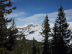 DSCF3772 (Laurent Lebois ©) Tags: laurentlebois france nature montagne mountain montana alpes alps alpen paysage landscape пейзаж paisaje savoie beaufortain pierramenta arèchesbeaufort