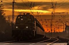 40_2019_02_14_Gelsenkirchen_Bismarck_1275_116_EH_mit_Sandzug ➡️ Herne_Abzw_Crange (ruhrpott.sprinter) Tags: ruhrpott sprinter deutschland germany allmangne nrw ruhrgebiet gelsenkirchen lokomotive locomotives eisenbahn railroad rail zug train reisezug passenger güter cargo freight fret bismarck db ccw de efm eh eloc hctor rpool pkpc spag 323 0077 0275 0632 1225 1265 1266 1275 3294 6145 6156 6185 6186 6189 6241 9123 9124 captrain ecr ell hectorrail lotos setg spitzke museumszug schrottzug logo natur outdoor graffiti wildgänse flugzeug sonnenuntergang airbus 380