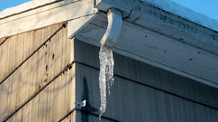 Hard Water (blazer8696) Tags: brookfield connecticut obtusehill usa unitedstates 2019 ct downspout dscn4416 ecw gutter ice t2019