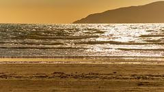 NZ Travels  - Paraparaumu Beach 13 (ArdieBeaPhotography) Tags: paraparaumubeach kapiti island coast shore beach sand haretails bunnytails grassseed dunegrass flax driftwood sunset sun lensflare dune pacific ocean sea glitter reflection