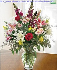 The Story Of Birthday Flowers Cheap Has Just Gone Viral! | birthday flowers cheap (franklin_randy) Tags: birthday flowers cheap delivered uk dubai free delivery near me send