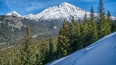End of the Line (writing with light 2422 (Not Pro)) Tags: kautzcreek pyramidpeak mountrainier mountrainiernationalpark nationalpark mrnp sonya7riii valley mountains snow trees firtrees douglasfirs pacificnorthwest thegreatpnw washingtonstate richborder rich border landscape rampartridge variotessartfe42470