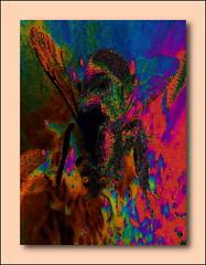 Wild Wasp (Howard J Duncan) Tags: digital art abstract wasp howardduncan howardjduncan