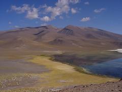 Laguna Santa Rosa, Parque Nacional Nevado Tres Cruces, Región de Atacama, Chile (Mildred Ehrenfeld) Tags: chile regióndeatacama parquenacionalnevadotrescruces laguna montaña andes