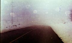 (Victoria Yarlikova) Tags: analog film 35mm zenit122 scan epsonv700 winter snow retro road darkroom analogue analogphotography expiredfilm experimenting format smallformat