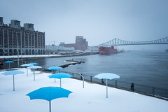Cold as Hell (Aymeric Gouin) Tags: canada québec montréal old port vieux cold froid hiver winter neige snow frozen saintlaurent river city ville cityscape landscape paysage white blue travel voyage fujifilm xt2 aymgo aymericgouin
