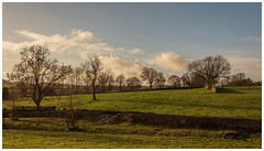 Sunshine and Shadows (Ian Emerson (Thanks for all the comments and faves) Tags: sunshine shadows peakdistrict derbyshire landscape trees canon6d outdoor fields farmland drystone wall clouds january newyearsday