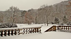 Winter im Schlosspark Meiningen (kadege59) Tags: meiningen wonderfulnature wow winter nature park thüringen thuringia deutschland canon germany trees tree travelling castle