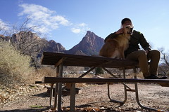 _A7R7781 (KevinXHan) Tags: zions national park nature hiking hike outdoors utah dog golden retriever vacation travel parus trail