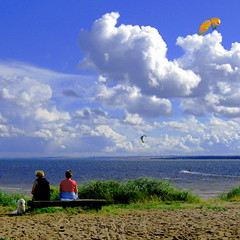 Sunny Afternoon (gcobb84) Tags: people dog surfers clouds sand grass