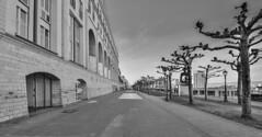 Mainz6 (R. Henne) Tags: mainz nikon d800 tamron 1530mm blackandwhite monochrome bw sw