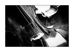 the broken cello (Armin Fuchs) Tags: arminfuchs musicalinstrument music cello violoncello diagonal broken strings old niftyfifty universityofmusic würzburg tagederneuenmusik
