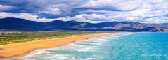 Badger Beach, from Badger Beach Lookout with Badger Head in the distance (Peter.Stokes) Tags: australia australian colour landscape nature outdoors photo photography badgerbeachlookout tasmania badgerbeach panorama beach seascape