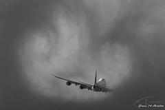AirBridgeCargo B747 (Ramon Kok) Tags: 747 7478f 748 abw ams avgeek avporn airbridgecargo aircraft airline airlines airplane airport airways amsterdam amsterdamairportschiphol aviation boeing boeing747 boeing74748f eham holland ru schiphol schipholairport thenetherlands vqblq