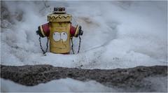 Kufstein . Tyrol (:: Blende 22 ::) Tags: hydrant canoneos5dmarkiv canonef2470mmf28liiusm kufsteinfortress river inn evening longexposure austria tyrol kufstein city fortress canon canoneosd ef2470mmf28lusm 2019