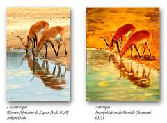 Antilopes (didier95) Tags: antilope peinture photo animaux