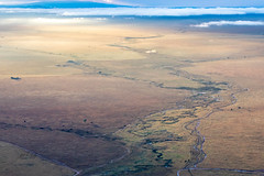 The Sun Rises Over the Serengeti (Jill Clardy) Tags: africa tanzania vantagetravel safari 201902239l8a0453 serengeti national park balloon dawn sunrise mara river