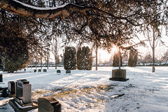 Vancouver-Winter-Walks-26 (_futurelandscapes_) Tags: vancouver winter snow cold february mountainview cemetery trees arboretum sunset evening graves sunny blue white vintage