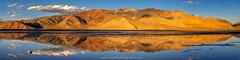 Tso Kar @ Ladakh, India (Avisekh) Tags: ladakh tsokar reflection mountain moonland india jk panorama golden sunset lake salt nikon d850 70200f4 tripod lee polatizer gnd rrs wwwavisekhphotographycom
