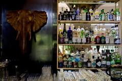 IMGP0414 Elephant Bar