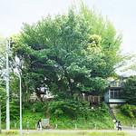 コミュニティスペースの写真
