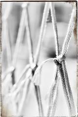 El que sabe atarme no necesita ni cuerdas ni nudos, y sin embargo nadie puede desatar lo que él ha unido. (elena m.d.) Tags: new monocromo nikon d5600 sigma sigma105 guadalajara street