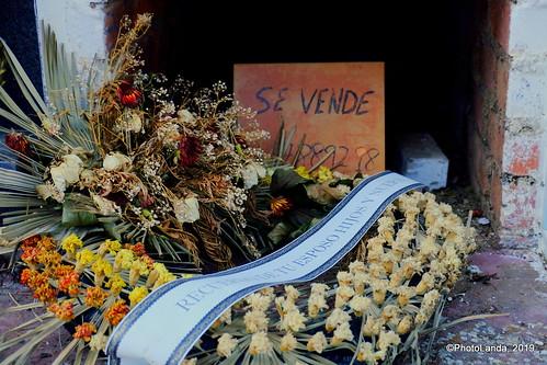 Cementerio de Beas de Guadix