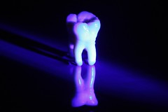 Tooth (NANNA KOKOLINE) Tags: tooth dentist abstract dentista tandlæge tand bright neon dental lighting colour colourful