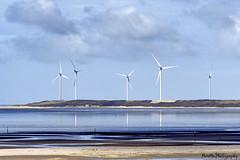 Slikken van Voorne (PIVAMA|photography) Tags: landscape view maasvlakte rotterdam water sea salt reflection windmill windmolens windmolen green energy groenestroom