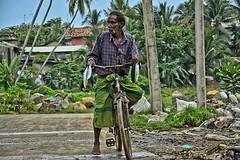 Yield (Zoom58.9) Tags: people human fish birds bicycle palms asia menschen leute life leben fisch vögel palmen asien canon eos 50d