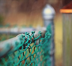 Fenced Friday (Sue90ca HAPPY EASTER) Tags: canon 6d fencedfriday helios 442